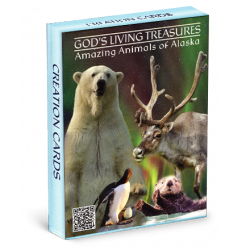 God's Living Treasures - Amazing Animals of Alaska Cards